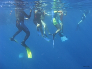 Snorkeling al Cristo degli Abissi organizzato dal CRAL RL con la Corderia Nazionale
