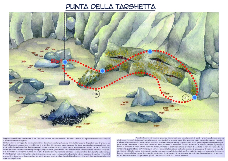 Punta della Targhetta