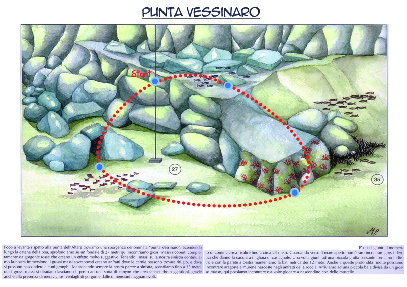 Punta Vessinaro