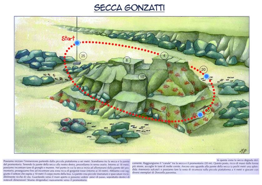 Secca Gonzatti