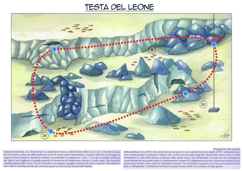 Testa del Leone