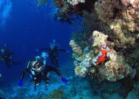 HSA - articolo scubaportal